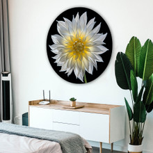 Metal circle print with hanger, superimposed in bedroom with white walls and plant. Macro flower dahlia photography by Tim Lutz.