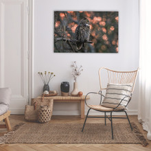 Metal print with Black Gallery, recessed frame, superimposed on wall. Wildlife photography by Jeff & Wendy Photography.