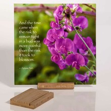 Bamboo Desktop Stands
