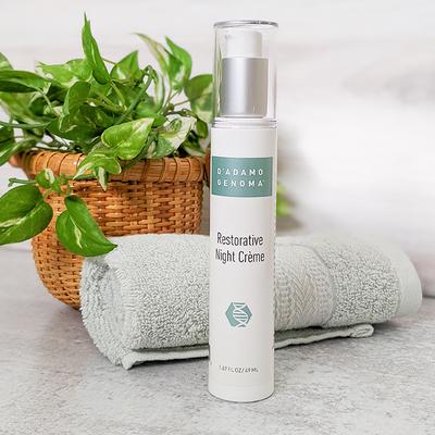 Restorative Night Crème - Natural Skin Care