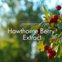 The Hawthorne berry extract in Genoma Cardia promotes circulatory health