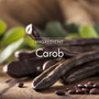 The main ingredient in Carob extract is the carob pod, a low calorie, healthy chocolate alternative.