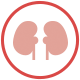 Sugar effects on the kidneys
