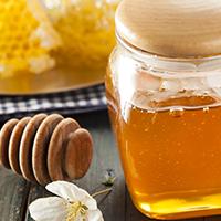Sugar Sub - Honey