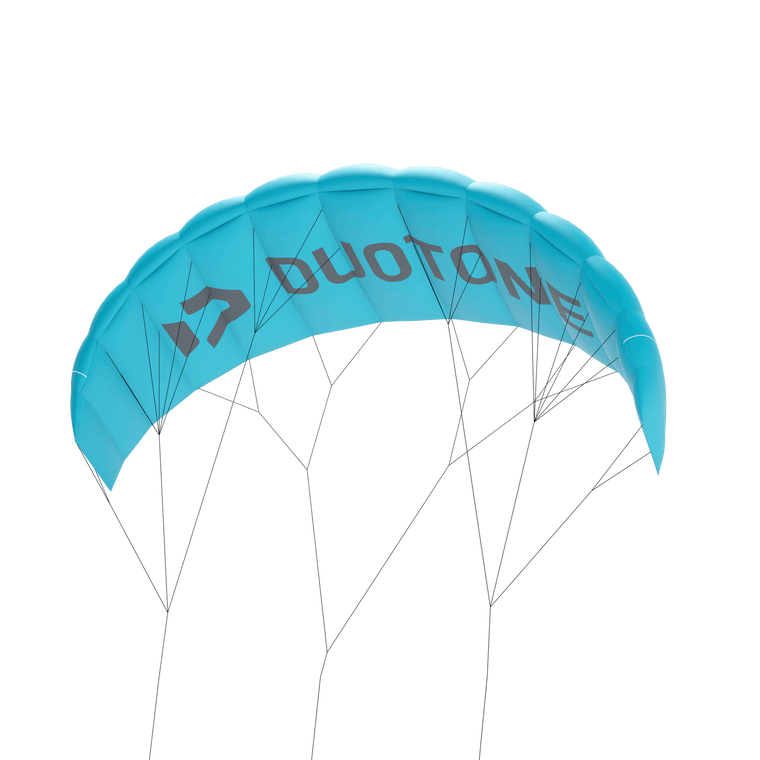 DTK LIZARD TRAINER KITE 1.8m