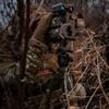 PIG0311-G Field Shooting Tripod, OD Green