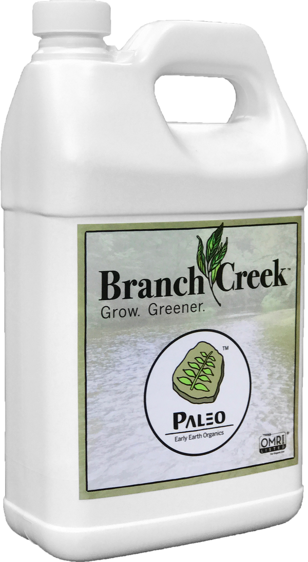 Branch Creek - Paleo