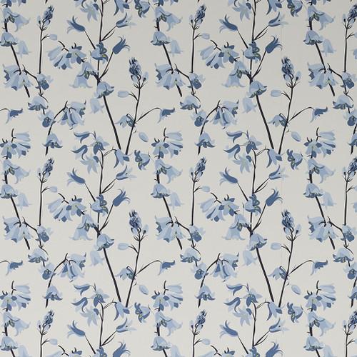 Bluebell wallpaper.