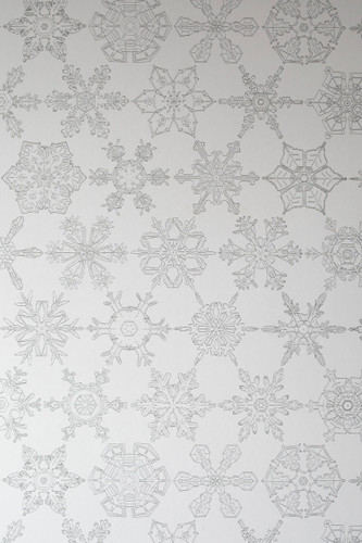 Intricately hand-drawn snowflake wallpaper designed by Abigail Edwards.