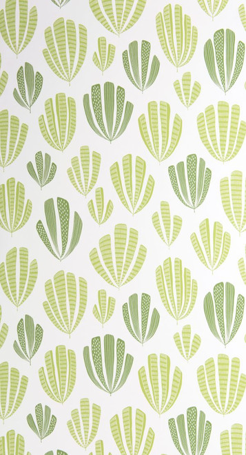 Succulents in green on white wallpaper.