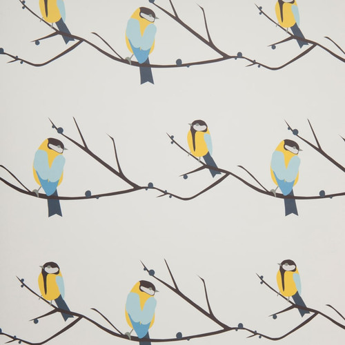 Yellow and blue birds sitting on an Juneberry branch,