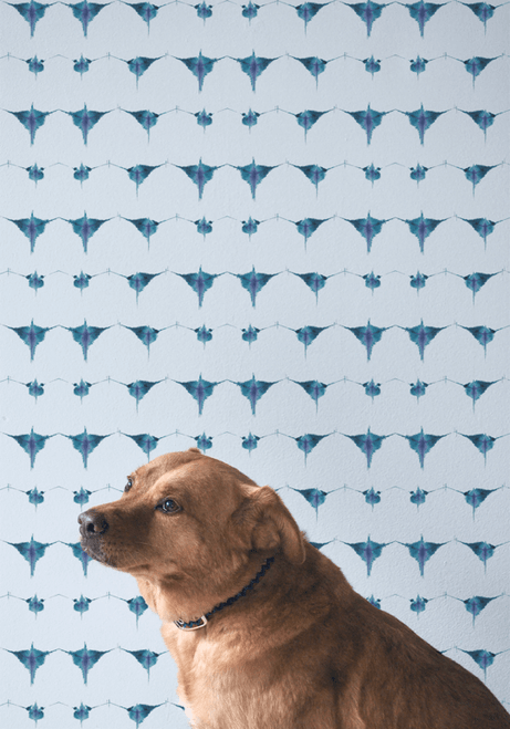 Abstract dyed wallpaper in blue with a dog.