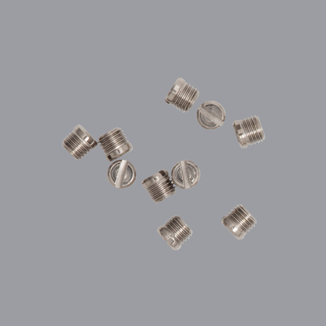 DS-S Pkt 10 Screws