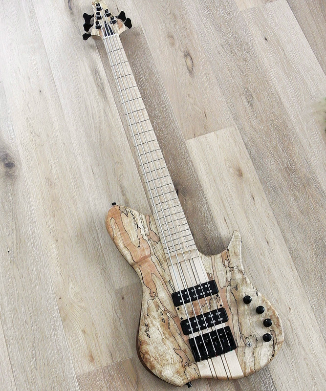 TUNE  THR5 SM - 5 String Active Bass - Single Cutaway With Spalt Maple Top-  Special NAMM model