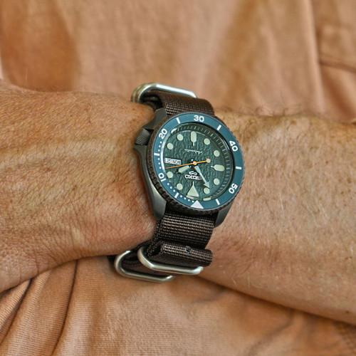 Ballistic Nylon Military Watch Strap - Brown (Matte Buckle)