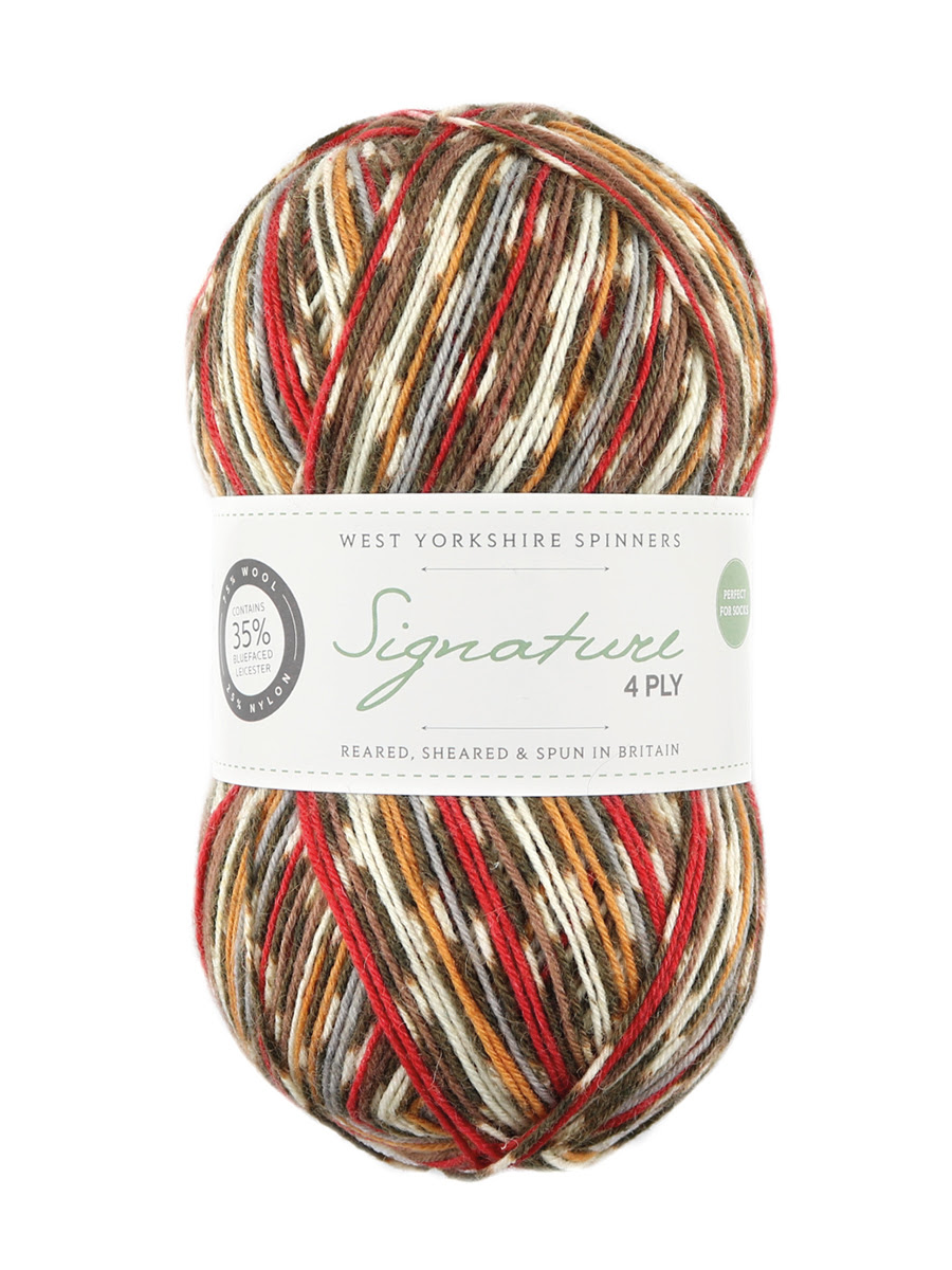 Signature 4-ply in Robin shade from West Yorkshire Spinners