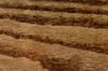 Minwax Wood Finish Wood Stain, Early American, Gal.