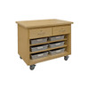 Hann Mobile Project Support Cart