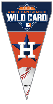 Houston Astros 2015 American League Wild Card Winner Pin