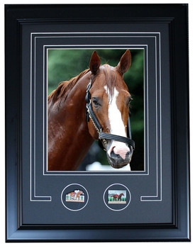 "Justify 2018 Triple Crown Winning Bath -  Framed Pin Photo - 19"" x 15"""