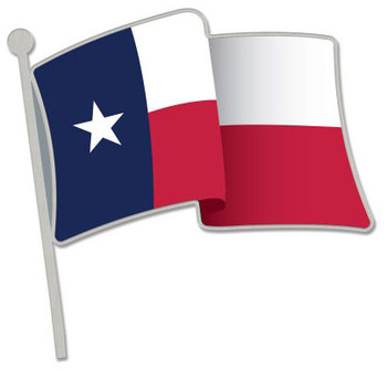 Texas State Flag Pin