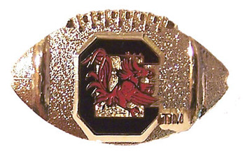 South Carolina Football Pin