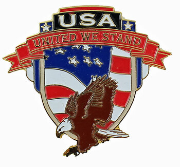 Flying Eagle United We Stand Pin