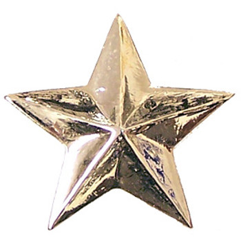 Gold Star Incentive Pin