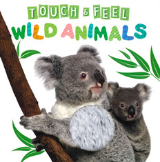 Wild Animals Touch & Feel (Board Book)