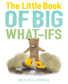The Little Book of Big What-Ifs (Hardcover)