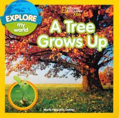 Explore My World A Tree Grows Up (Paperback)