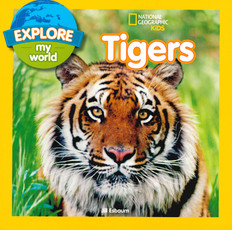 Explore My World Tigers (Paperback)