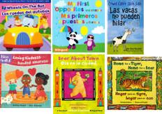Thankful for Books!  Fall Reading Challenge 2021 Set of 6 (Spanish/English)