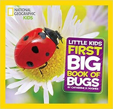 National Geographic Kids: Little Kids First Big Book of Bugs Hardcover