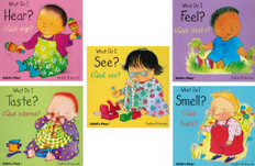 Small Senses Bilingual Set of 5 (Board Book)