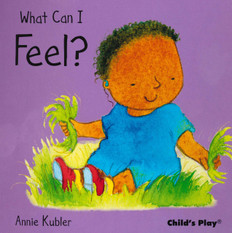 What Can I Feel? Small Senses (Board Book)