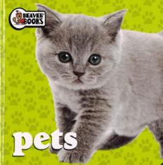 Pets (Chunky Board Book)