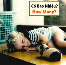 How Many? (Vietnamese/English) (Board Book)