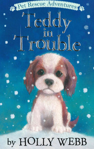 Teddy in Trouble (Paperback)