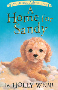 A Home for Sandy (Paperback)