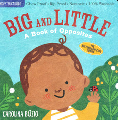 Big and Little:  A Book of Opposites (Indestructible)