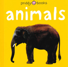 Animals (Board Book)- Clearance Book