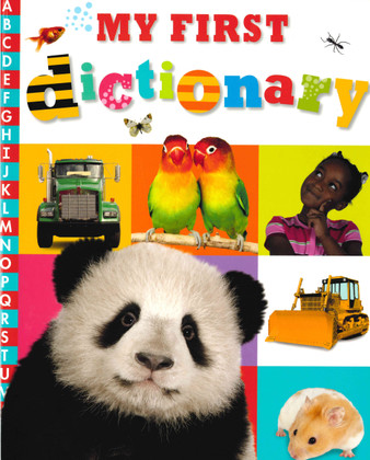 My First Dictionary (Paperback)