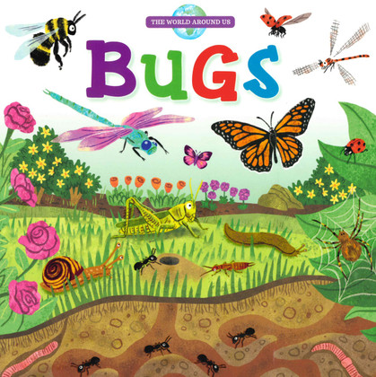 Bugs: The World Around Us (Board Book)