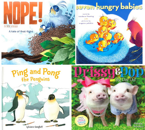 Silly Animal Stories Set of 4 (Hardcover)