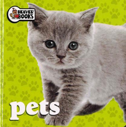 Pets (Chunky Board Book)-Clearance Book