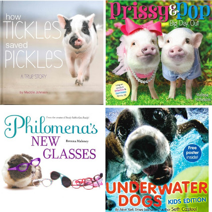 Animal Stories: Hardcover Favorites Set of 4