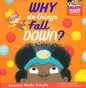 Why Do Things Fall Down? (Hardcover)