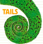 Tails: What Animal Has a Tail Like This? (Paperback)