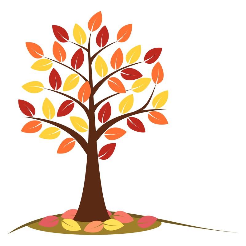 fall-tree.jpg